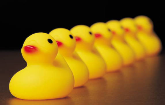 Get your ducks in a row - James Kristian